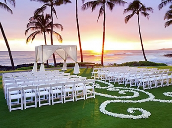 The Most Important Day Of Your Life Wedding Planner Our More Por Venues Junglespirit Choice Image